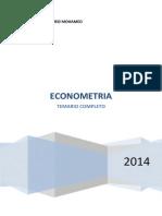 Temas EconometriaP