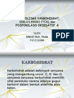 Afandi_Metabolisme