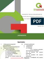 PET15.Lineamientos.pdf