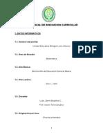 1. Plan Anual Matemática 10mo-Egb 2014-2015
