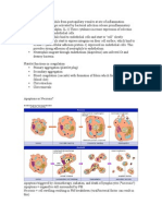 Histology Notes