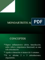 MONOARTRITIS_AGUDA[