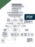 YRPSLP and PRT Services Flowchart