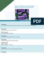 Streptococcus Pyogenes