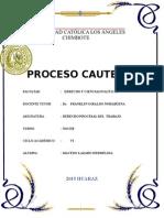 Monografia de Derecho Procesal de Trabajohml