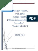 12 plagas y enfermedades en viveros forestales for Libro viveros forestales