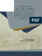 Medidas Cautelares y Los Procesos de Ejecucion