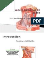 tumores-benignos-de-cuello (1)