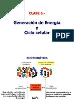 CICLO CELULAR Y GENERACION DE ENERGIA