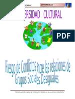 Informe de Diversidad Cultural