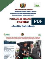 Promec Individual