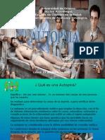 autopsia-15973