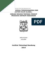 SEBUAH REVIEW TENTANG PRINSIP PRODUKSI ENTROPI MAKSIMUM