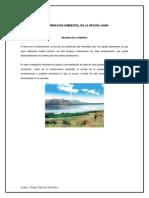 Contaminación Ambiental en La Región Junin