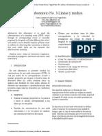 Informe Laboratorio  Lineas y Medios