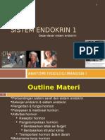 Sistem Endokrin 1
