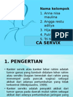 CA SERVIX