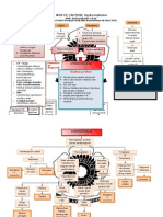 pathway hidrosefalus