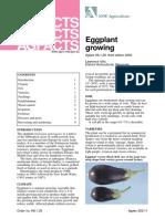 Eggplant Growing Agfact H8.1.29