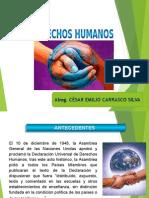 Derechos Humanos 2015 i