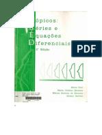 calculo 3 -  Topicos e equacoes diferenciais.pdf