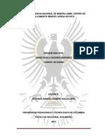 Informe Centro Nacional de Mineria