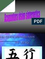 Acupuntura Vision Sintergetica