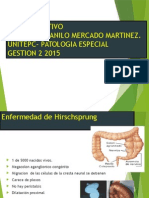 Tubo Digestivo Unitepc 2-2015