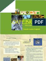 proyecto 1 orfebreria