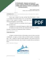 Modelo Relatório = trabalho acadêmico