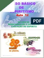( Espiritismo) - C B - Aula 12 – As Leis Da Reencarnacao E Do Carma # 02.pptx