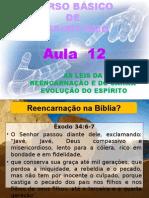 ( Espiritismo) - C B - Aula 12 – As Leis Da Reencarnacao E Do Carma # 04.pptx