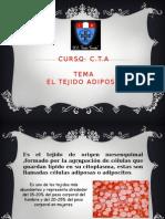 El Tejido Adiposo Dhana3