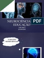 neurocinciaeaeducao-130917221018-phpapp01