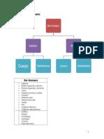 Digramas UML con clases