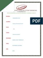 ACTIVIDAD PASTORAL II UNIDAD OLASCUAGA.pdf