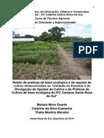 Rel Est Moises Thalia Catarina Completo 28 Março 2015