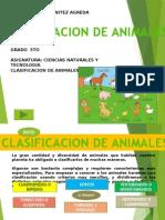 clasificaciondelosanimales-101015190733-phpapp02