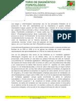 EVALUACIÓN DE NEMAROOT EN EL CONTROL DE Meloidogyne incognita EN EL CULTIVO DE CHILE BELL BAJO CONDICIONES DE AGRICULTURA PROTEGIDA