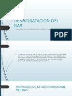 Deshidratacion Del Gas