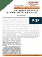VASQUEZ SANCHEZ, V. 2008. Falanges de camélidos mochica_de los osteocitos a su ADN nuclear.pdf