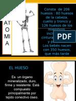 clasificaciondelasfracturas-130212183402-phpapp02
