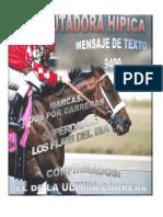 Domingo Hipodromo La Rinconada