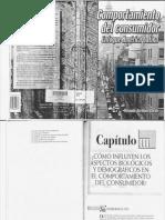 Comportamiento Del Consumidor-Arellano.compressed