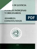 SISTEMA DE JUSTICIA DE LOS PUEBLOS INDIGENAS
