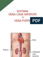 Sistema Vena Cava Inferior y Vena Porta