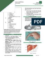 OS 206 E1 20131112 Liver, Gallbladder, And Stomach