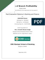 IDBIMSB Project Report