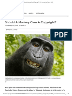 Should a Monkey Own a Copyright_ _ 13