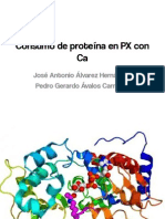 Consumo de Proteína en Pacientes Con Cancer
